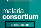 Senior Technical Specialist at Malaria Consortium